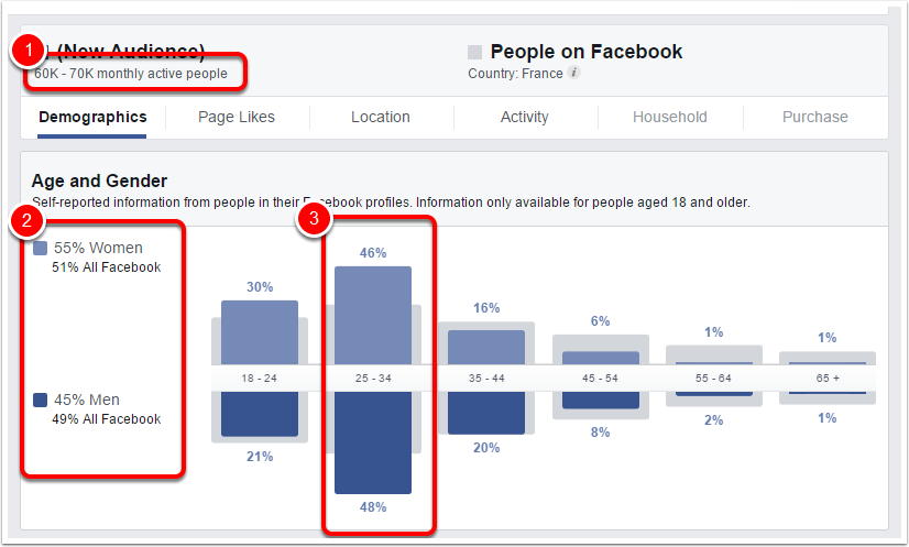 facebook audience insight webmarketing & Com 1