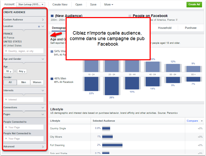 ciblage FB audience insight